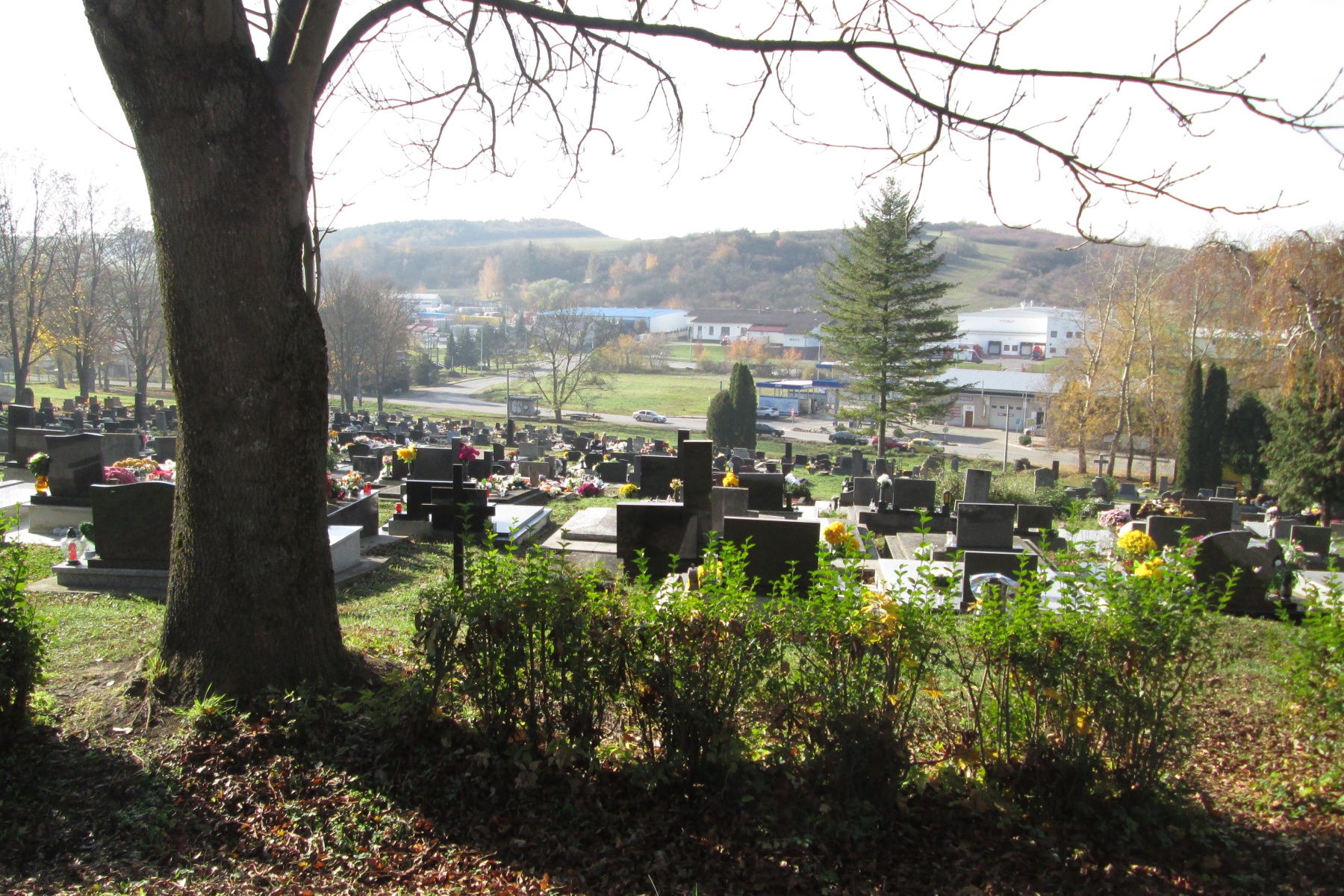 Myjavský cintorín